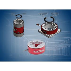 Custom Torque Sensors