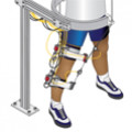 Robotic Leg Rehabilitation Device